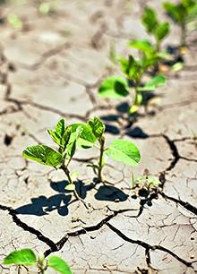 Over dreigende droogte en waardevol water